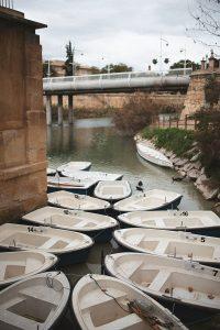 >thisisjustarandomplaceholder<rio-segura-barcas   Iberian Press®