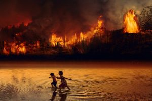 >thisisjustarandomplaceholder<Fuego Amazonas - IP | Iberian Press®