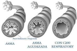 >thisisjustarandomplaceholder<imagen.aspx_ | Iberian Press®
